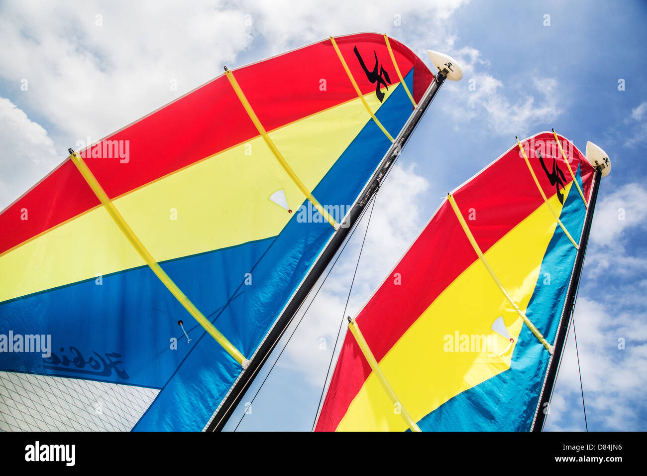 Sails of Hobie sailing dinghies on Rasa Ria beach near Kota Kinabalu in Sabah Borneo - Stock Image