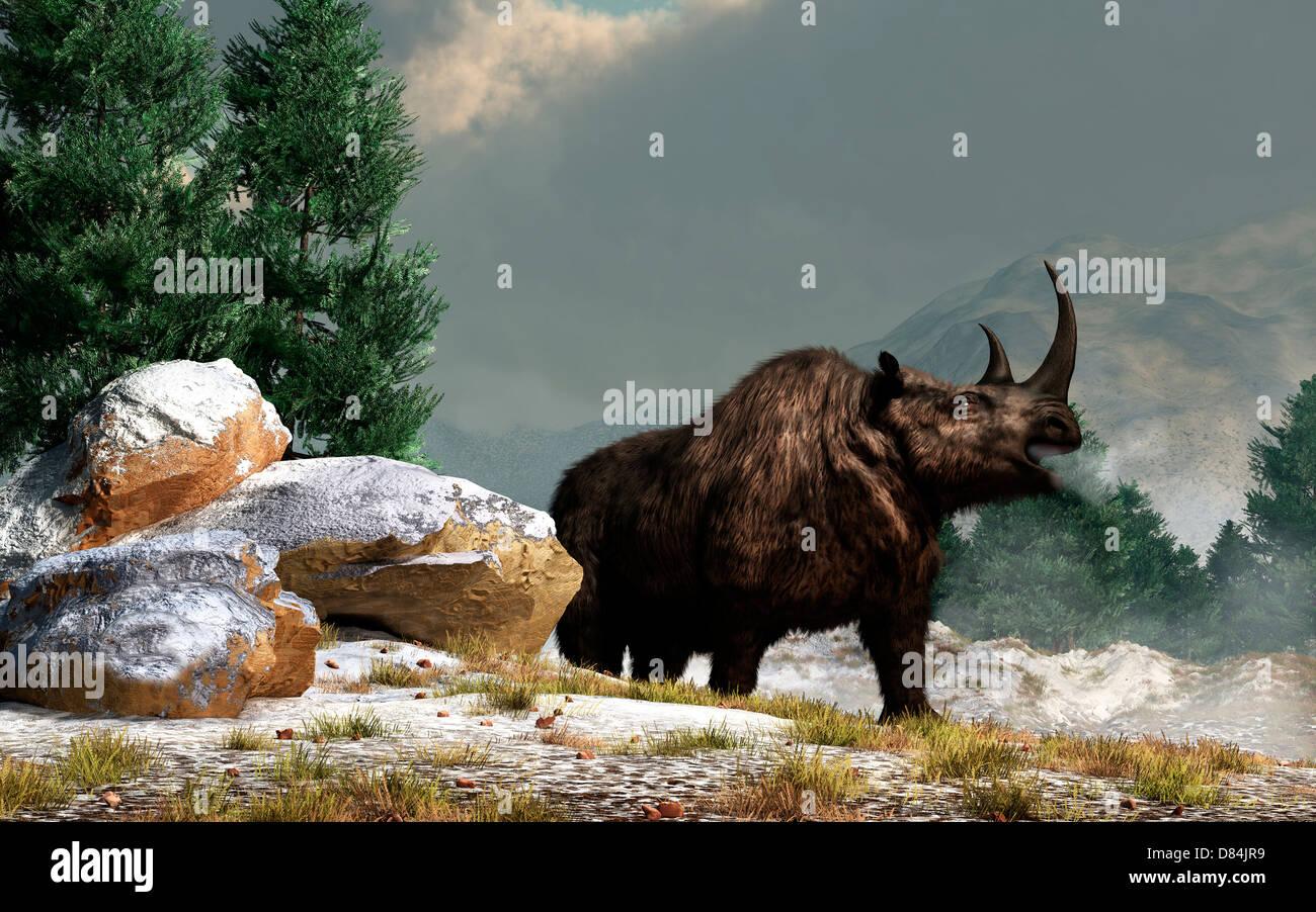 A woolly rhinoceros in the snow, Pleistocene epoch. - Stock Image