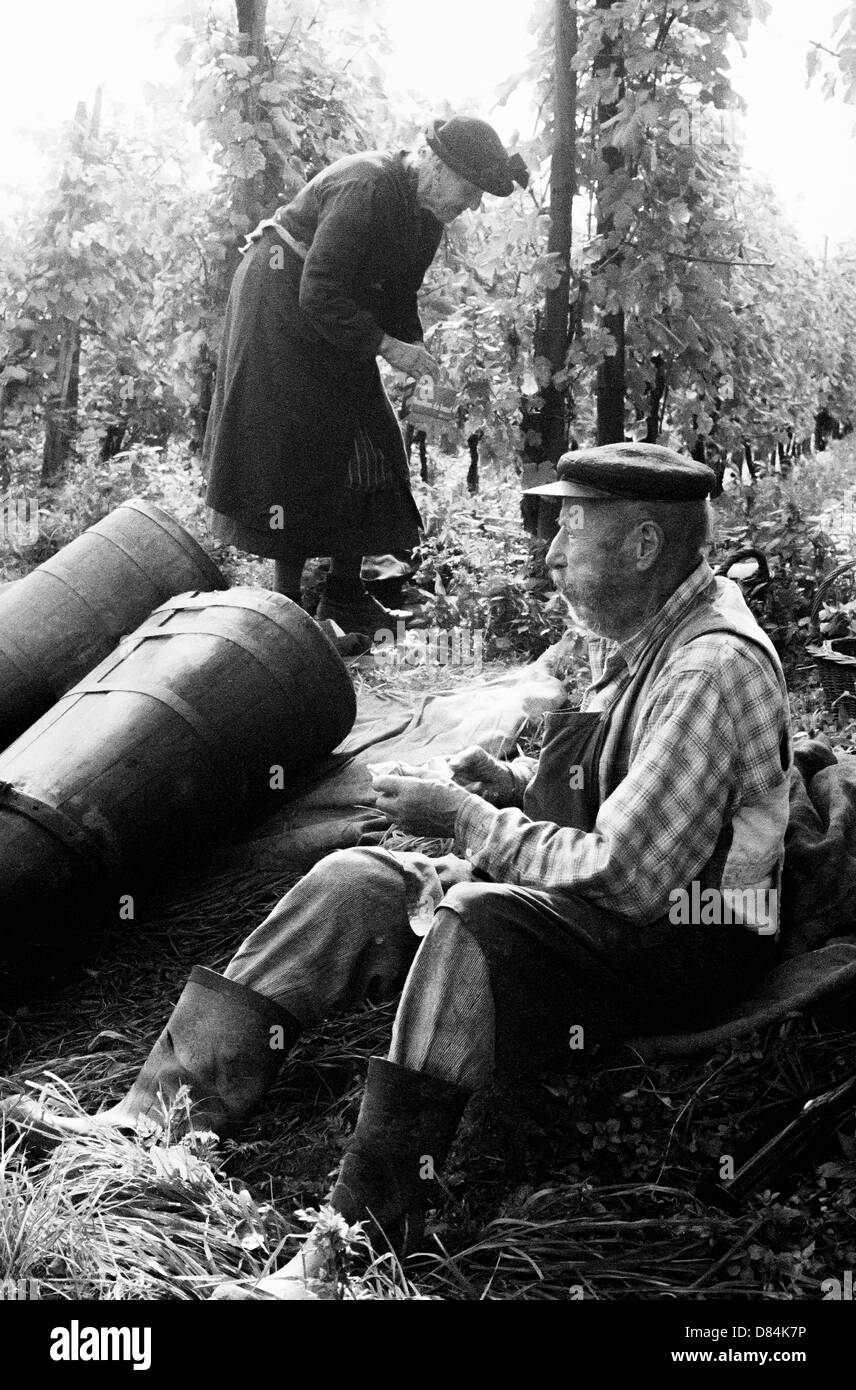 1963 Elderly wine growers at lunchtime in vineyard Alsace France - Stock Image