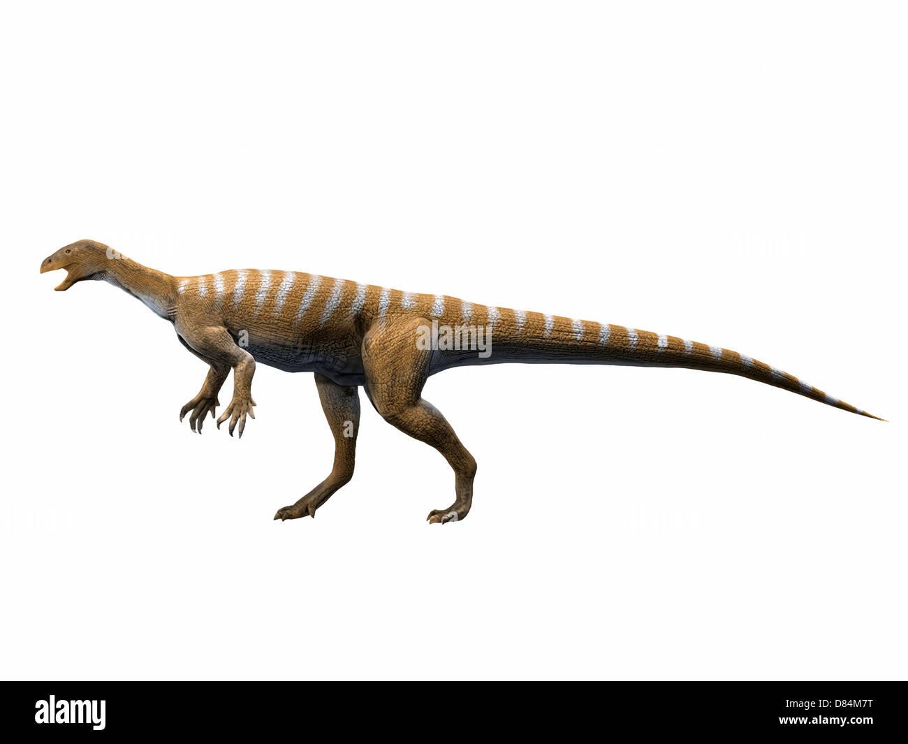 Thecodontosaurus antiquus, Late Triassic of The United Kingdom. - Stock Image