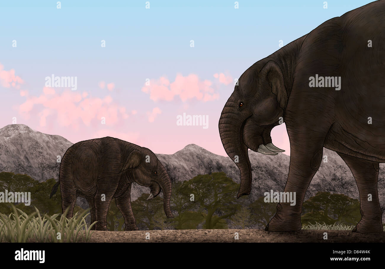 Two Deinotherium, an extinct animal of the Miocene epoch, relative to modern day elephants. - Stock Image