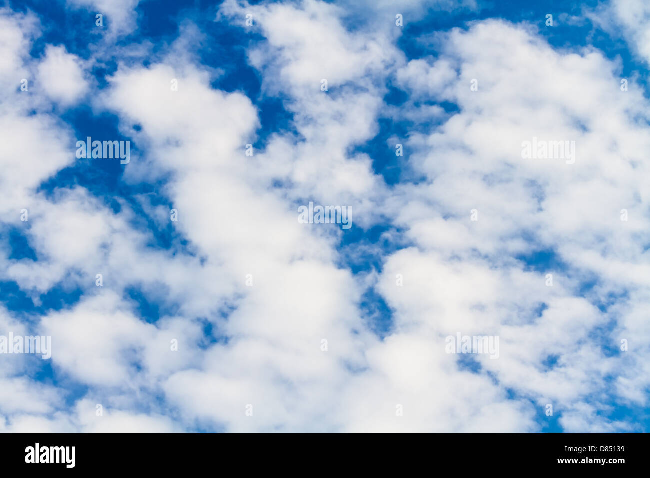 Puffy white clouds against a perfect blue sky. - Stock Image