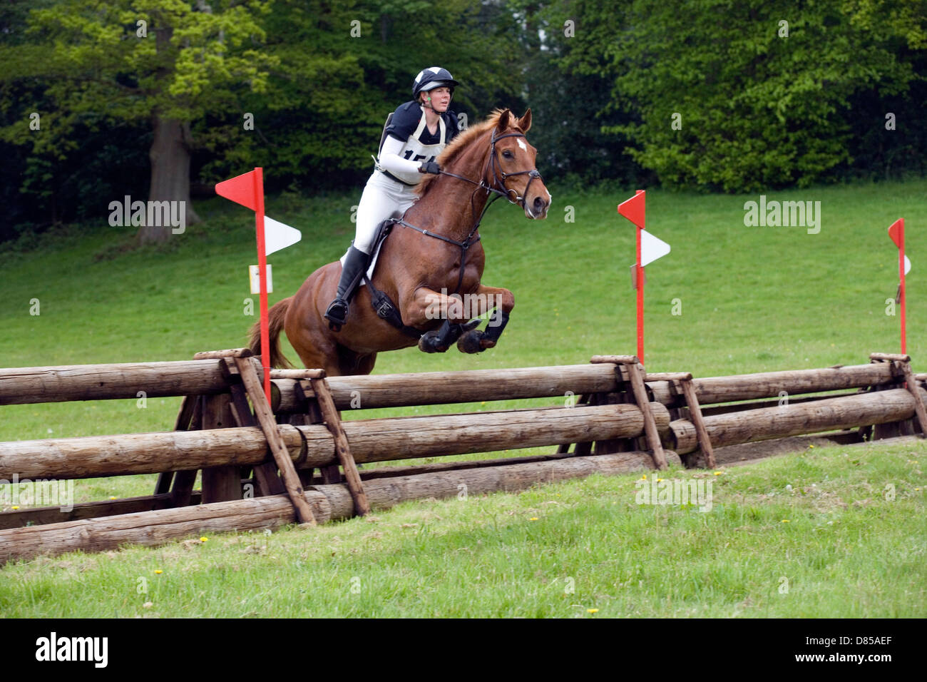 Horse Jumping Eventing Cross Country Stock Photos Amp Horse