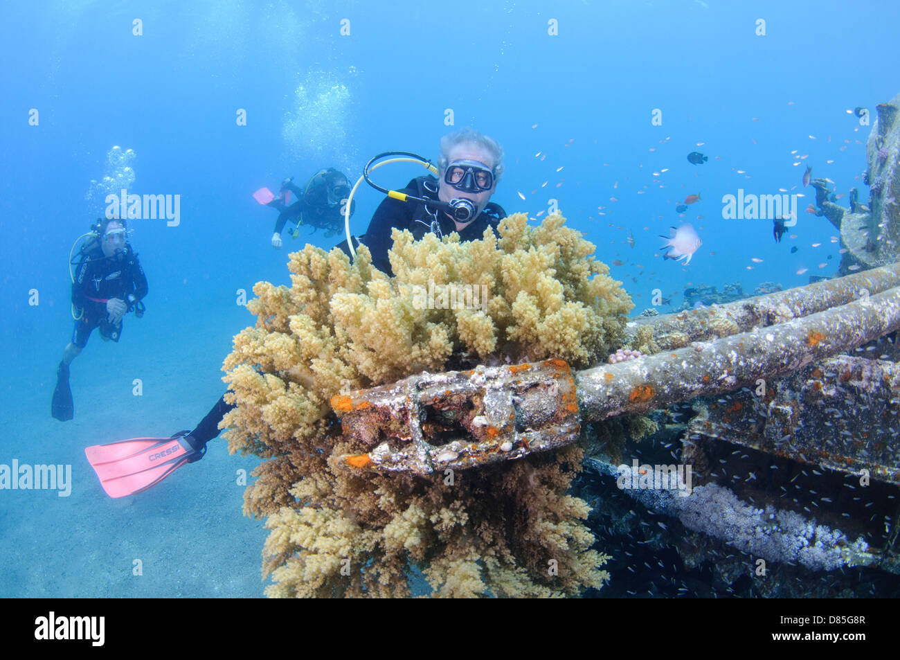 Divers at a sunken tank off the cost of Aqaba, Red Sea Jordan - Stock Image