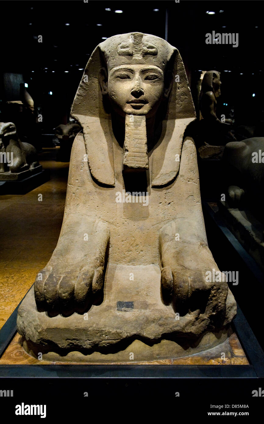 Italy Piedmont Turin Egyptian Museum Statuary room the sphinx - Stock Image