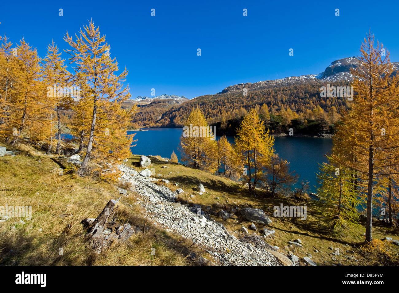 Italy Piedmont Devero alp Alpe Devero Devero lake - Stock Image