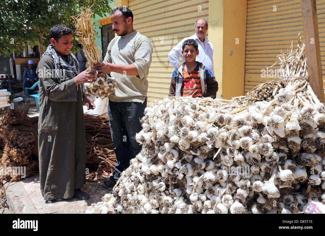 Market stall with garlic in Al Ghanayem, Upper Egypt - Stock Image