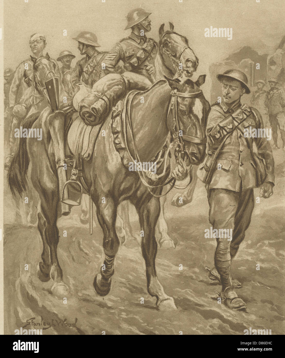Wounded Chum World War One Horses - Stock Image