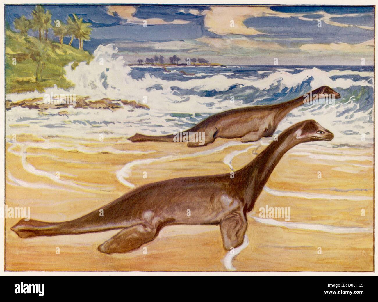 Extinct Plesiosaurs - Stock Image