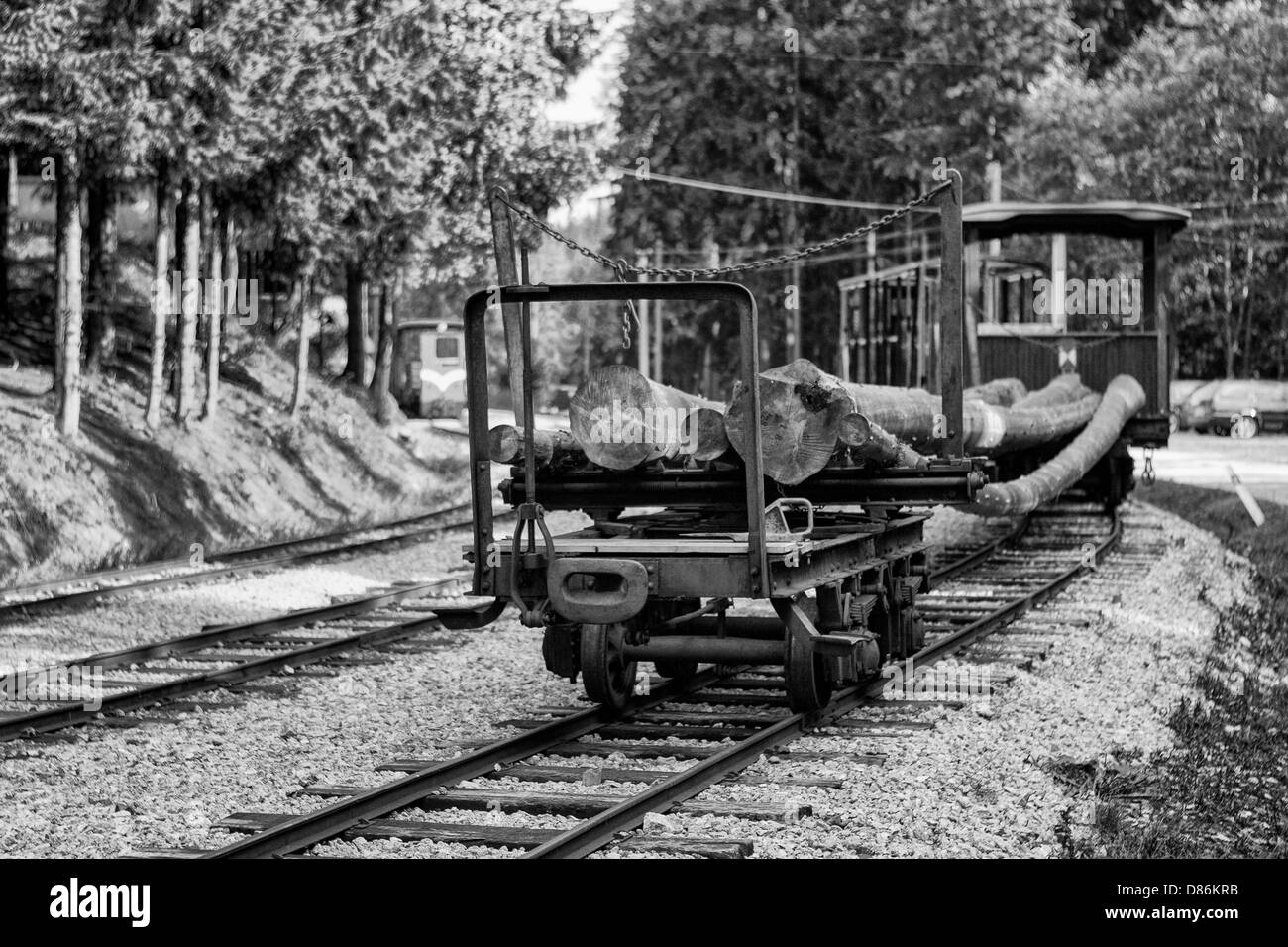 The old railway timber transport Stock Photo