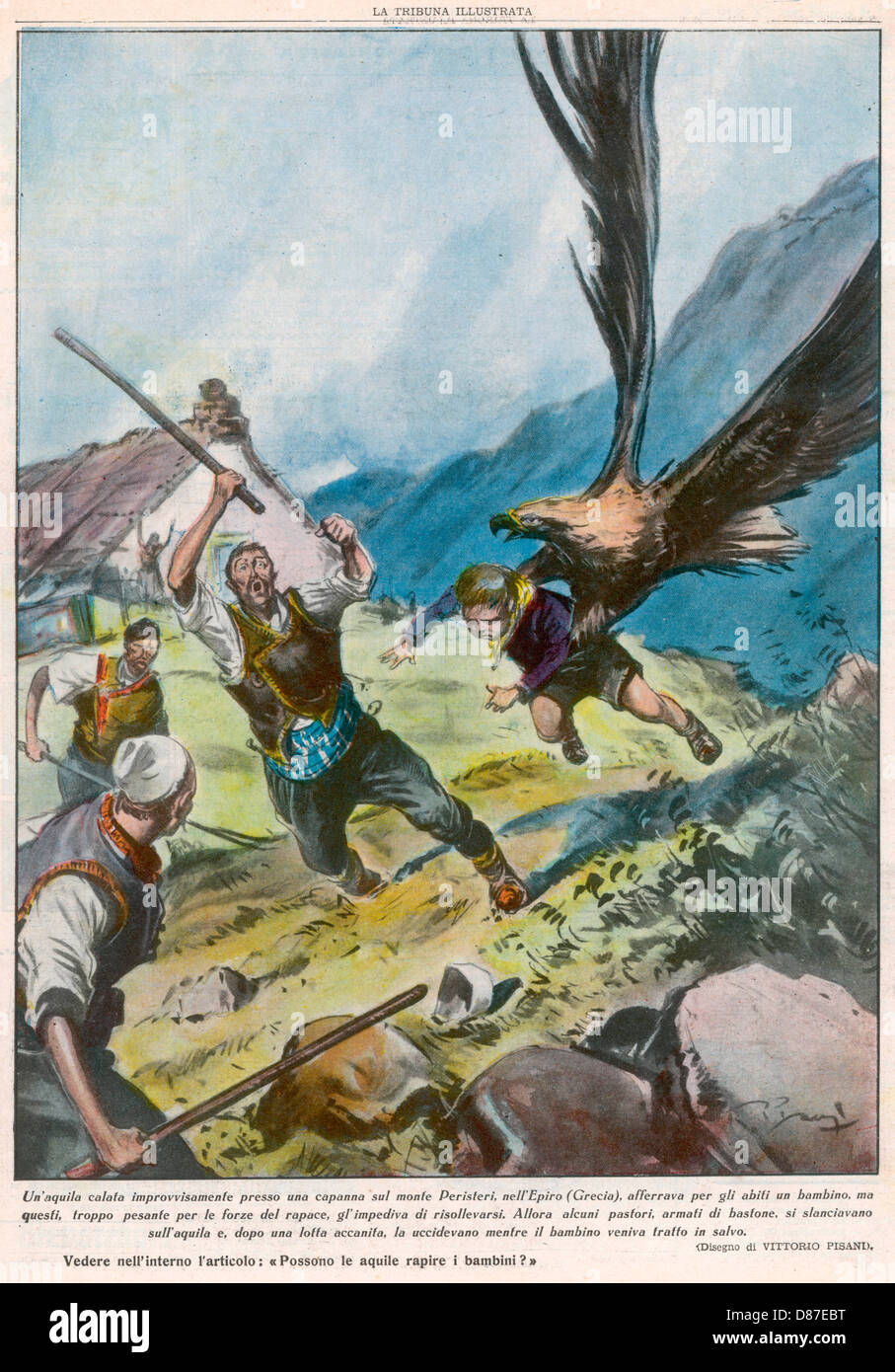 Eagle Attempts Abduction - Stock Image