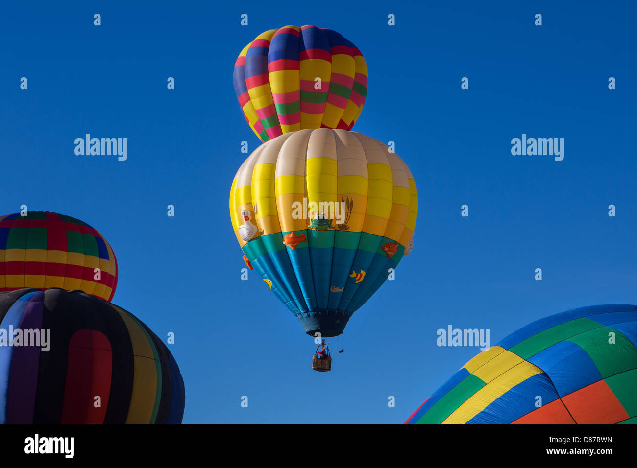 Hot air balloons, Gallup, New Mexico - Stock Image