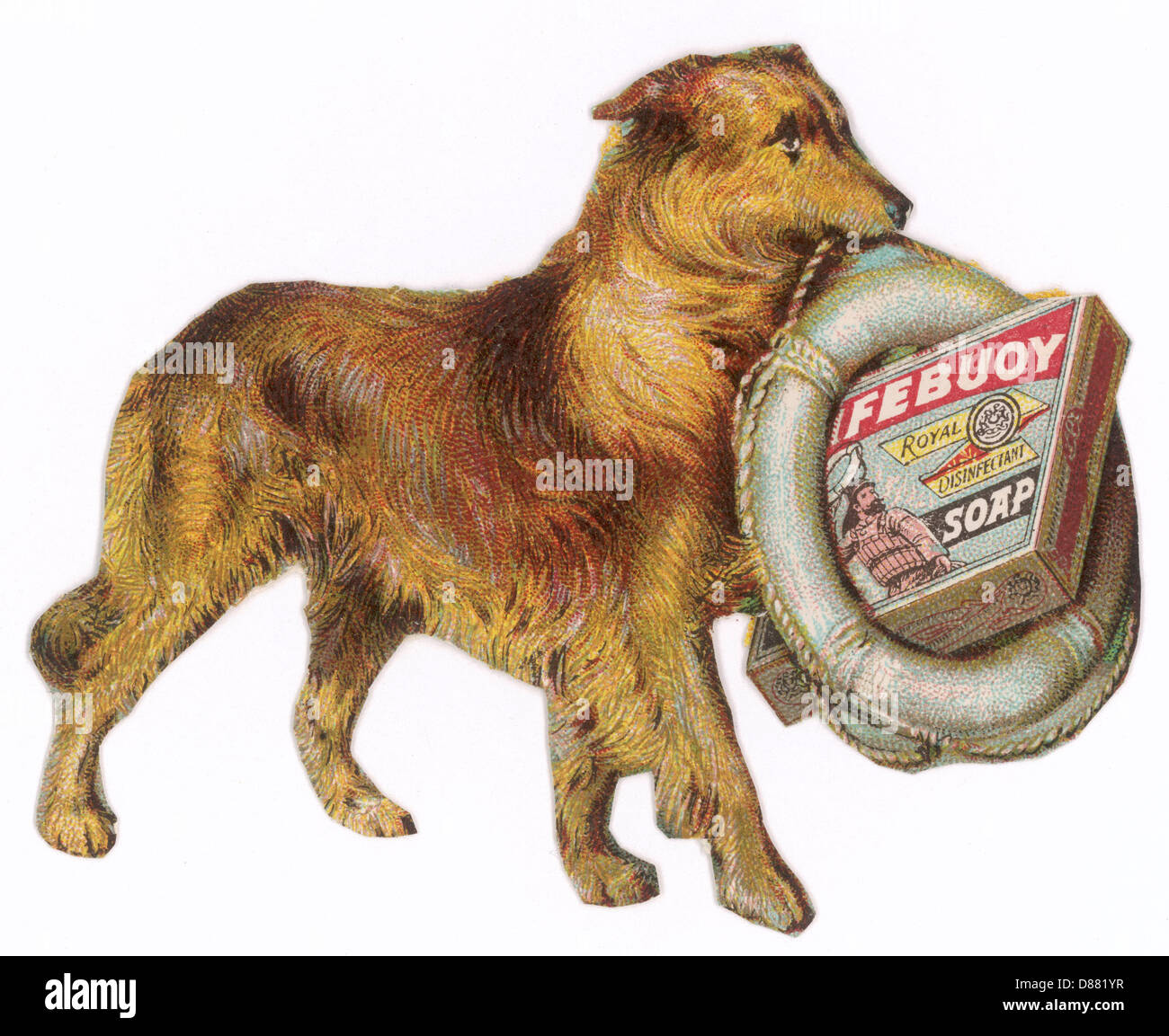 Advert Lifebuoy Dog 1890 - Stock Image