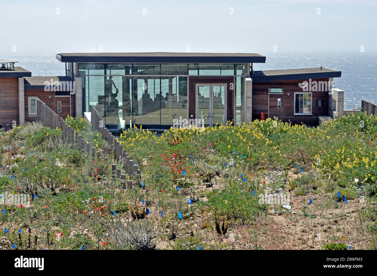 Golden Gate National Park Lands End Lookout visitor center - Stock Image