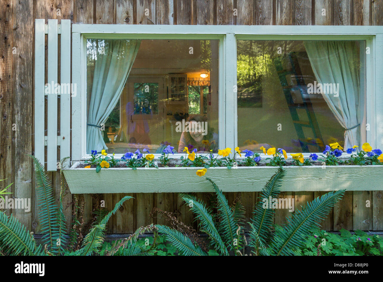 Woman in cottage window, Salt Spring Island, British Columbia, Canada - Stock Image