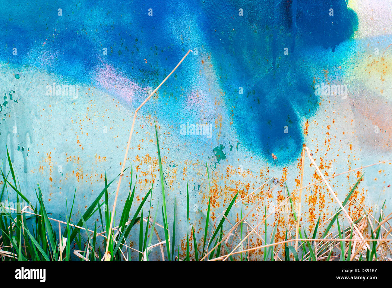 Grass and old painted wall in the traces of rust - Stock Image