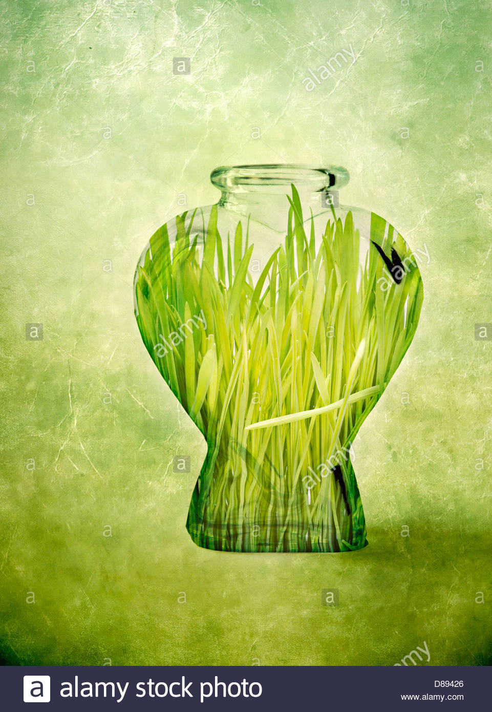 Digital manipulation of green grass inside a glass bottle - Stock Image