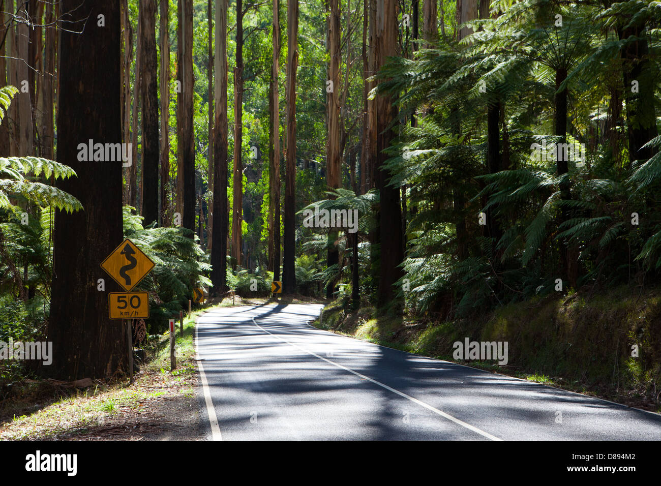 The Black Spur near Healesville, Victoria, Australia - Stock Image