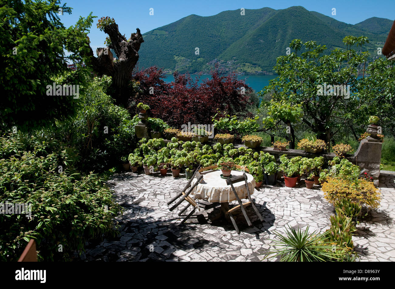 garden on monte isola, lake iseo, lombardy, italy - Stock Image