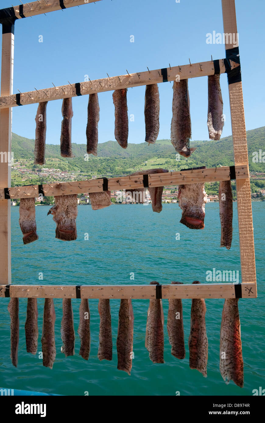 fish drying on rack, monte isola, lake iseo, lombardy, italy - Stock Image