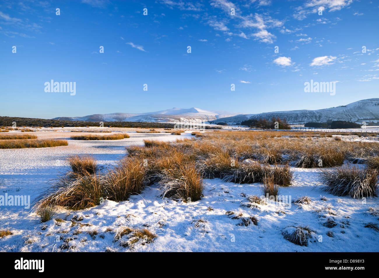 Pen y Fan & Corn Du mountains Mynydd Illtyd Common Brecon Beacons Powys Wales in winter - Stock Image