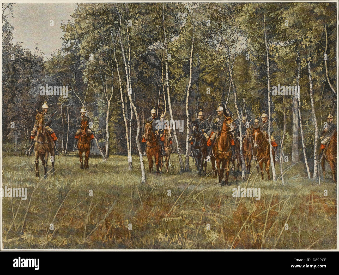 French Cavalry In Wood - Stock Image
