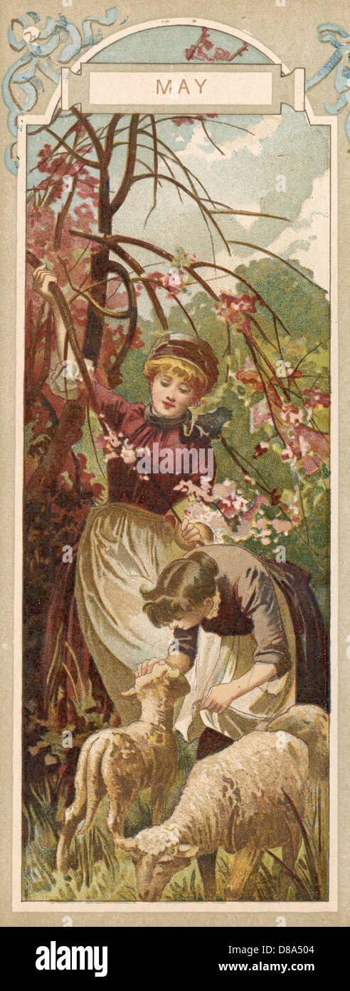 Women Lambs 1886 - Stock Image