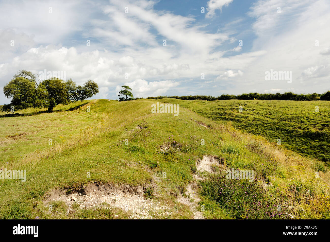 Warham Camp Iron Age hill fort. Section of the massive defensive double bank and ditch. Over 2000 years old. Norfolk, - Stock Image