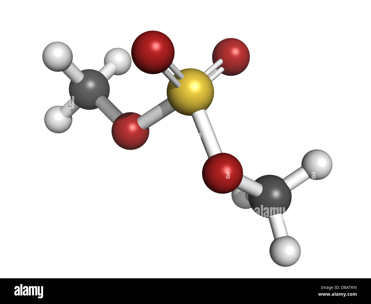 dimethyl sulfate methylating agent, molecular model. Atoms are represented as spheres with conventional color coding - Stock Image