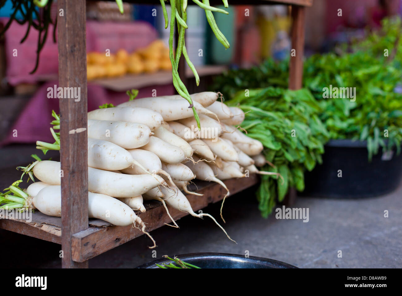 Japanese radish on asian market - Stock Image
