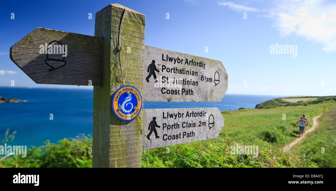 Coast path Caerfai Bay St Davids Pembrokeshire Wales Stock Photo