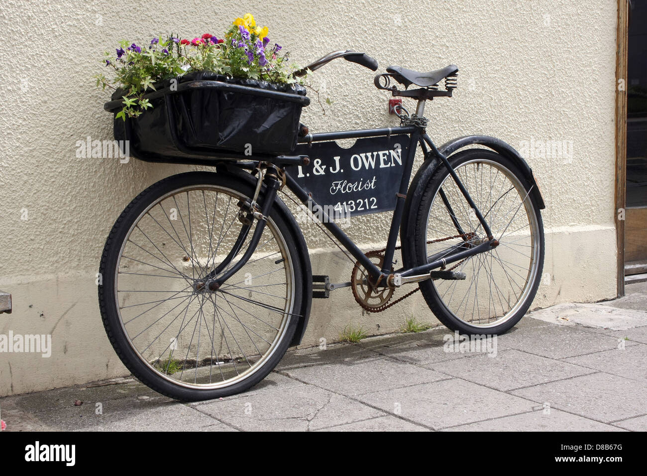 An old bike with flowers in the front to advertise a florists shop in Thornbury, Gloucestershire, May 2013 - Stock Image