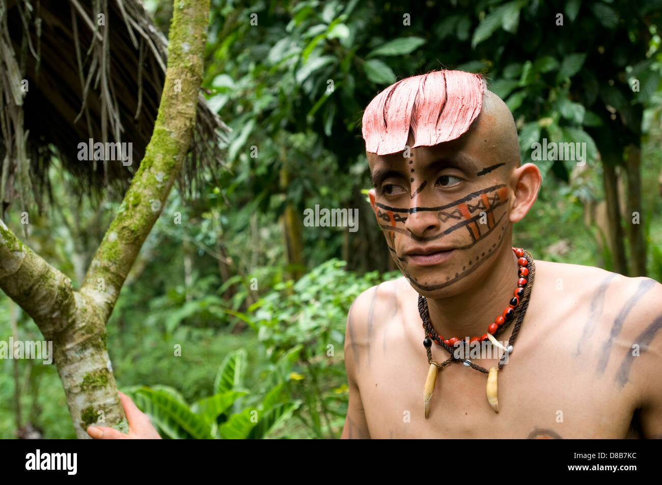 Young tsachila strolling through the forest Stock Photo