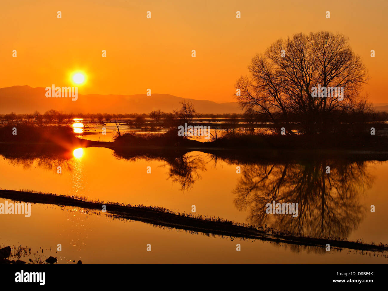 Sunset at lake Kerkini, probably the most important wetland and protected biosphere in whole Greece. Serres, Macedonia. - Stock Image