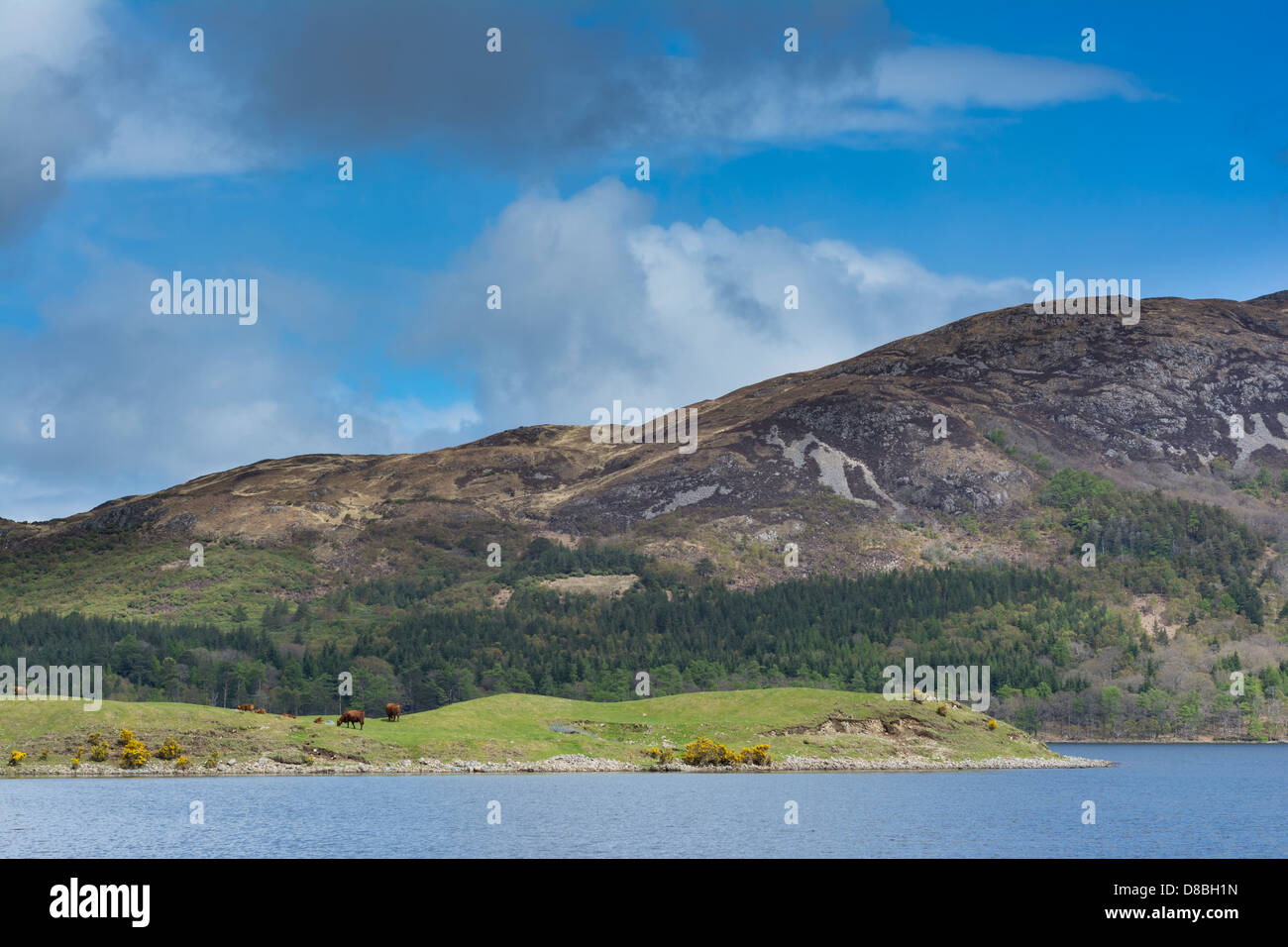 View of the shore of Loch Ba, isle of Mull, Scotland - Stock Image