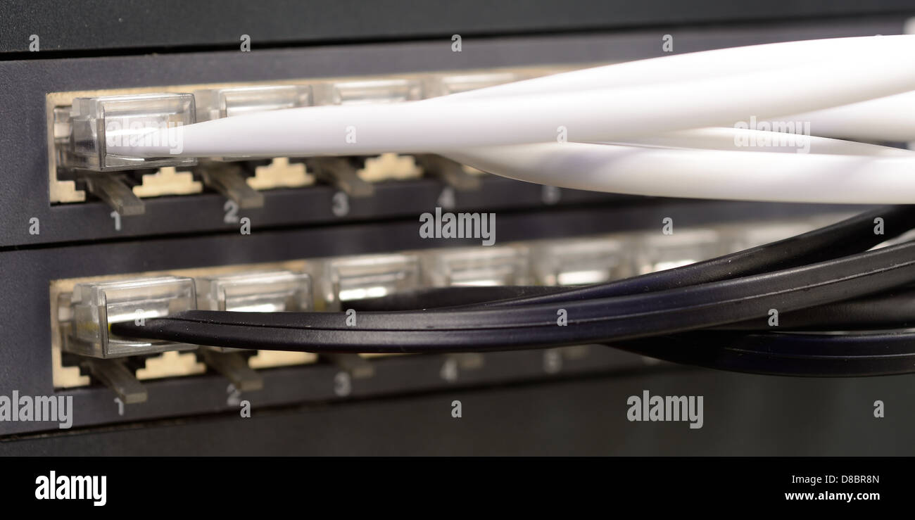 Plugged white and black telephone patch cords to the patch panel - Stock Image