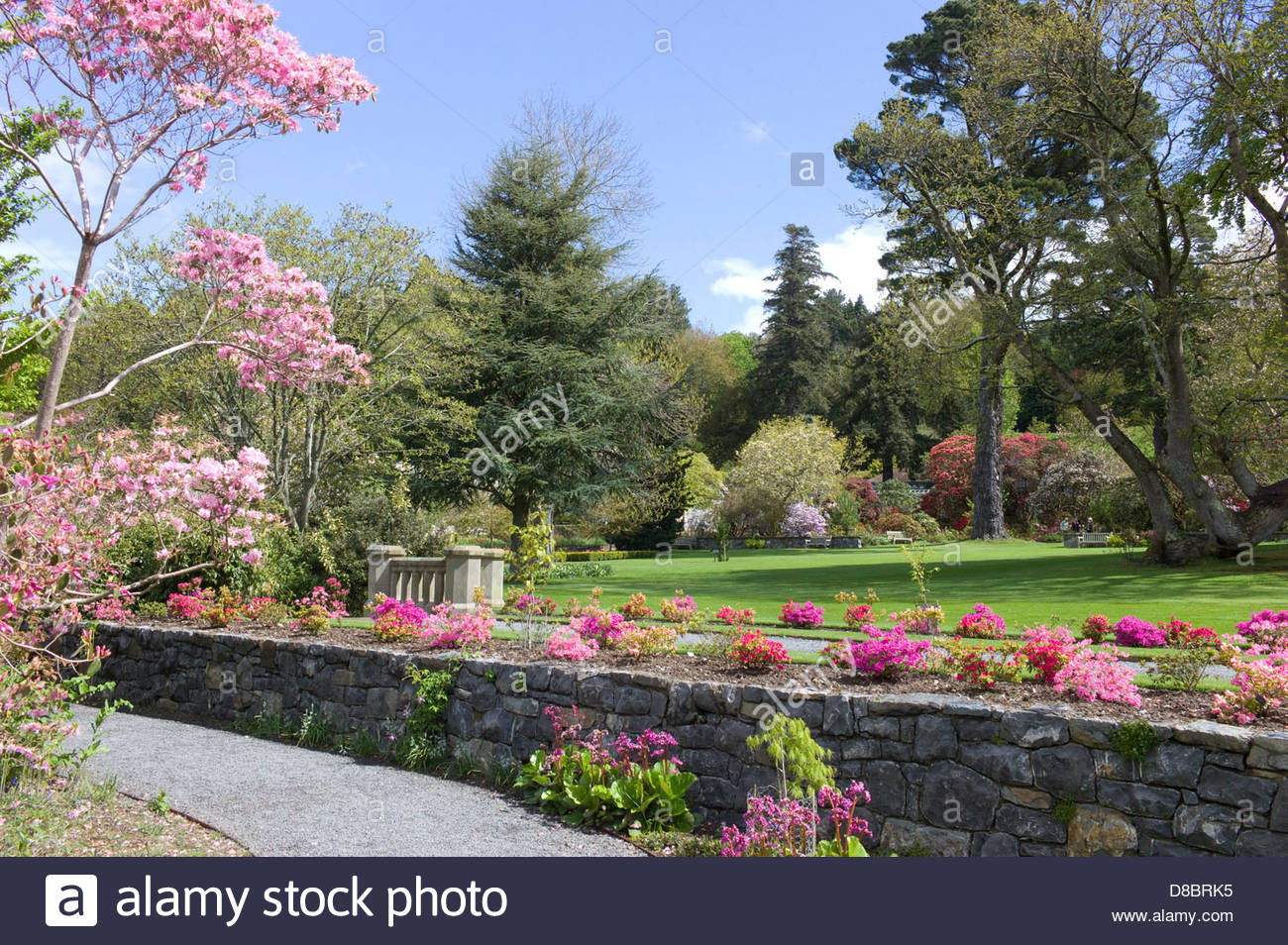 National Trust, Bodnant Gardens, Conwy Valley, North Wales, UK Stock Photo