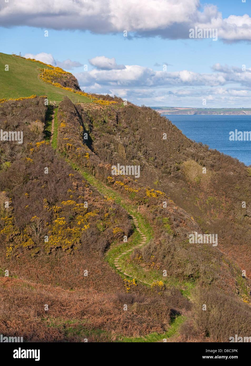 Winding path on sunny coastal hill in Dorset - Stock Image
