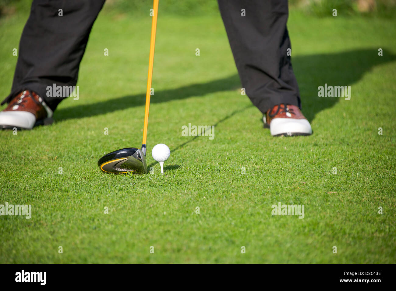 a golfer addresses the ball on the tee with his driver in the tee box - Stock Image