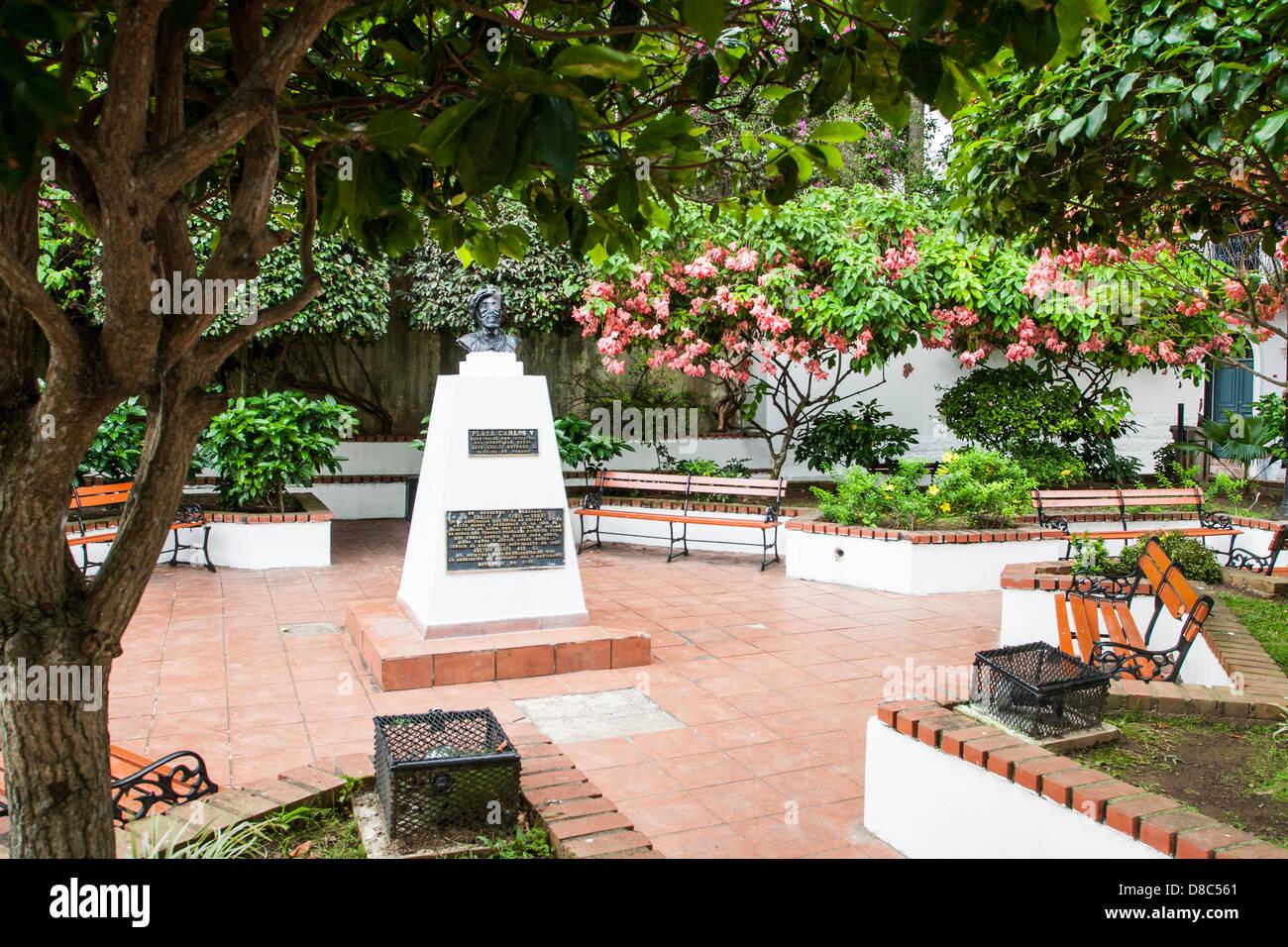 Plaza Carlos V in Casco Antiguo. - Stock Image