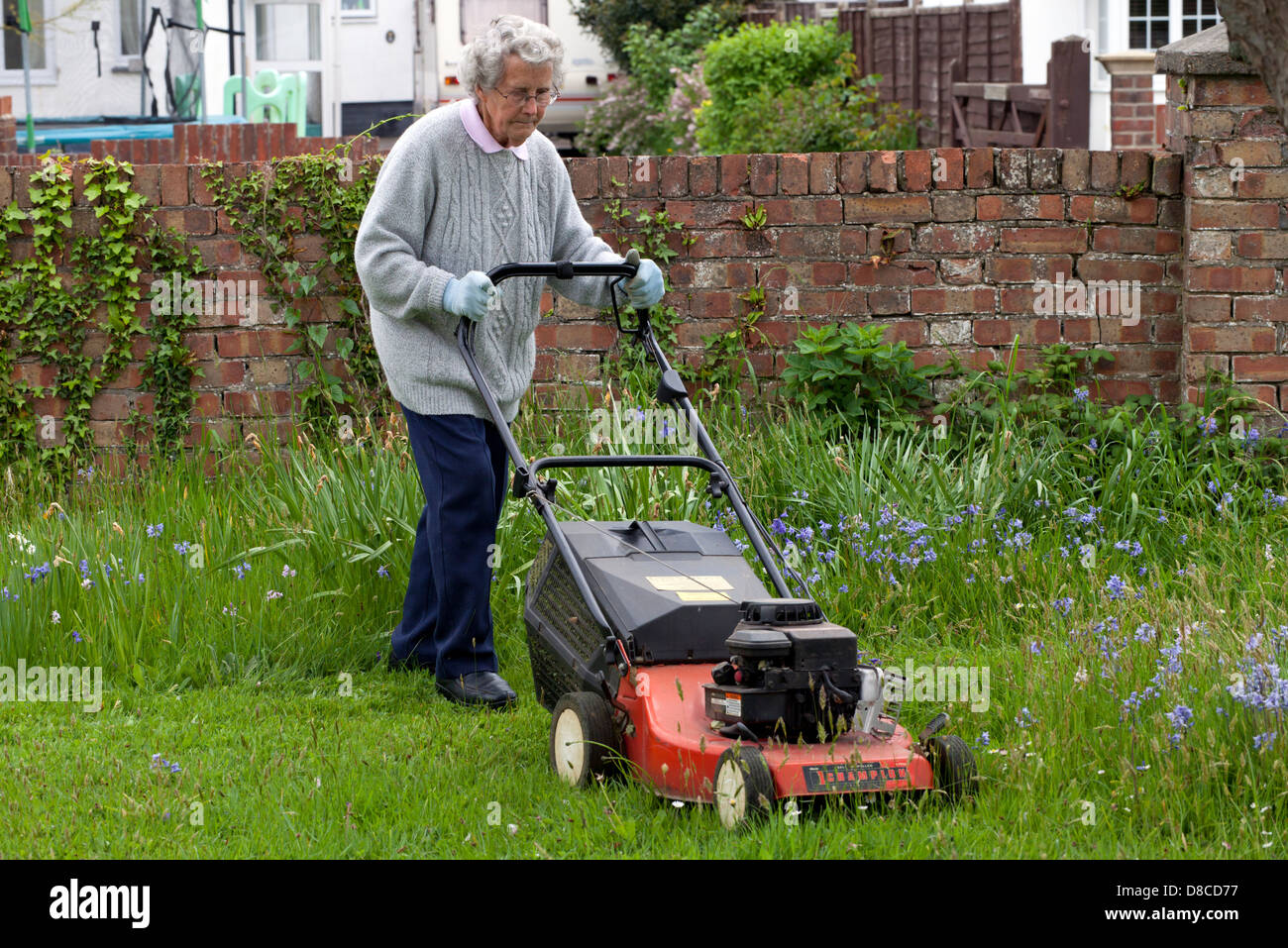 Senior woman mowing a lawn with a petrol lawn mower - Stock Image