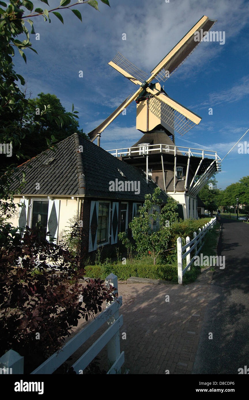 A house and a windmill in Weeps, The Netherlands - Stock Image