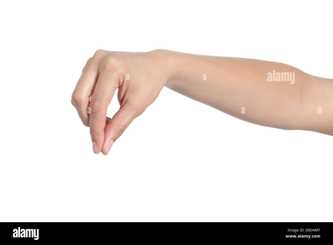 Woman hand holding something isolated on a white background - Stock Image