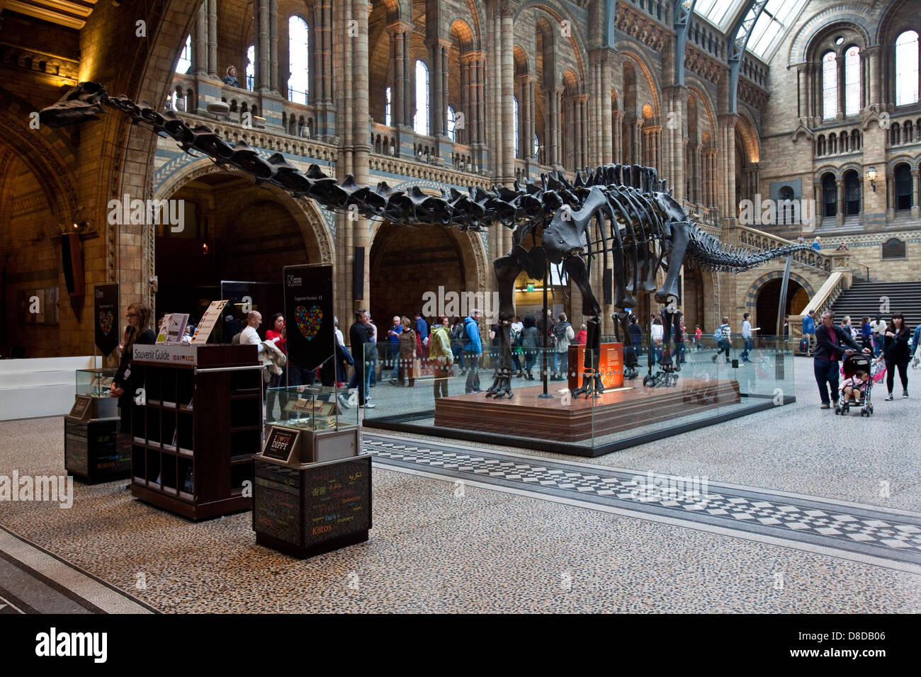 The Natural History Museum, London, England - Stock Image