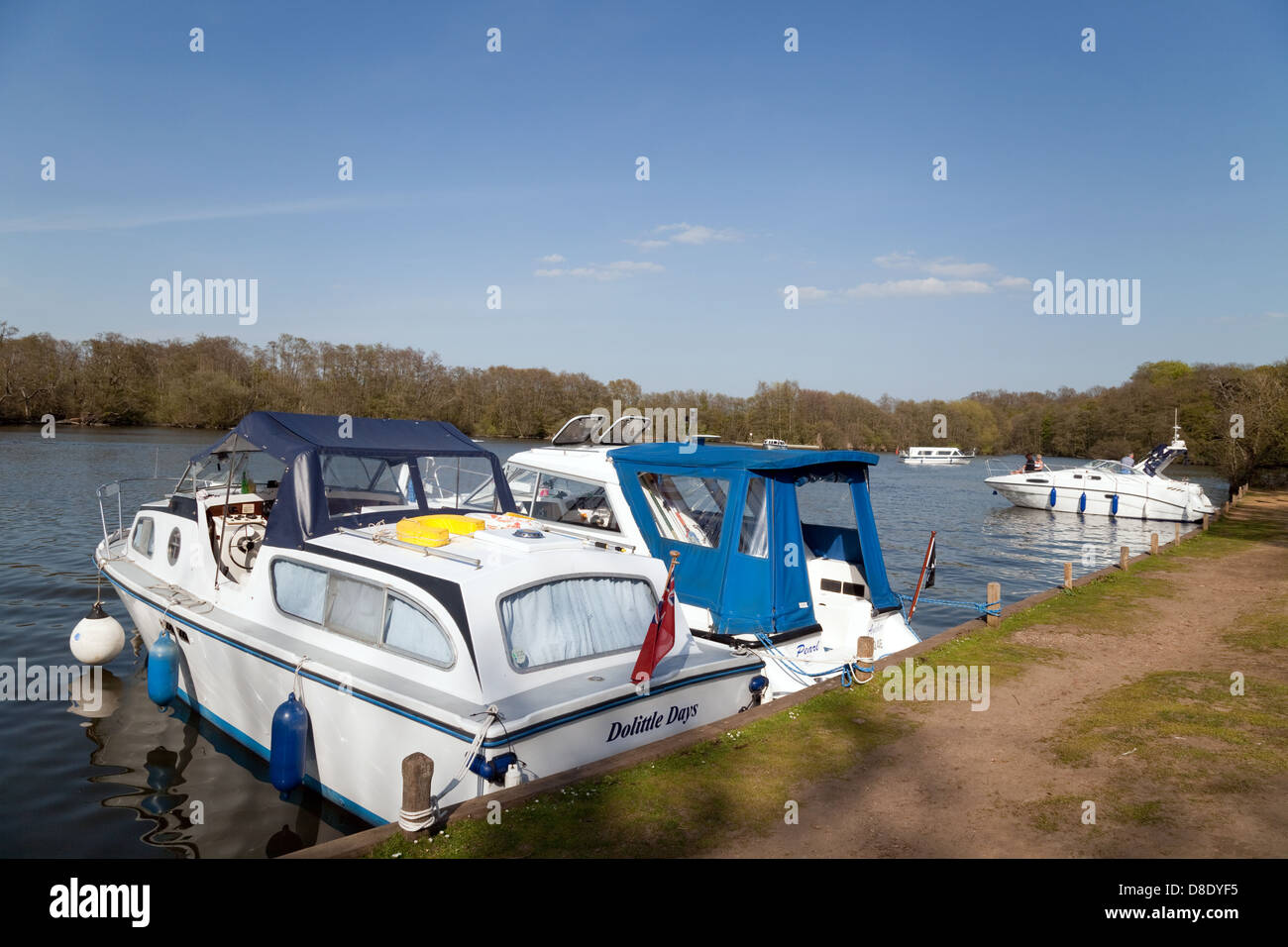 Motor cruisers boats moored for the evening, Salhouse broad, Norfolk Broads, East Anglia UK - Stock Image
