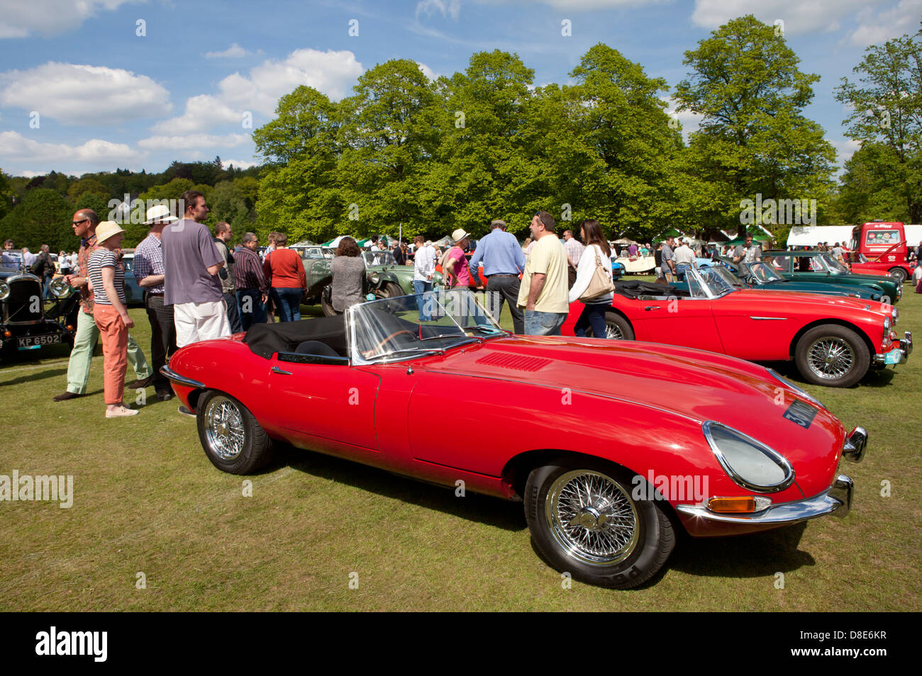 Classic sports cars on show at Haslemere Classic Car Show May 26th 2013 - Stock Image