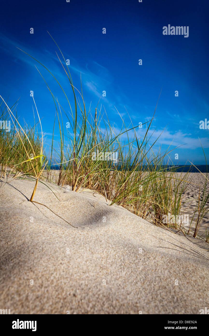 Dune, Sylt, Schleswig-Holstein, Germany - Stock Image