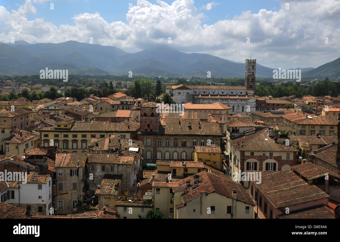 panoramic view of Lucca from the Guinigi Tower, Tuscany, Italy, Europe - Stock Image