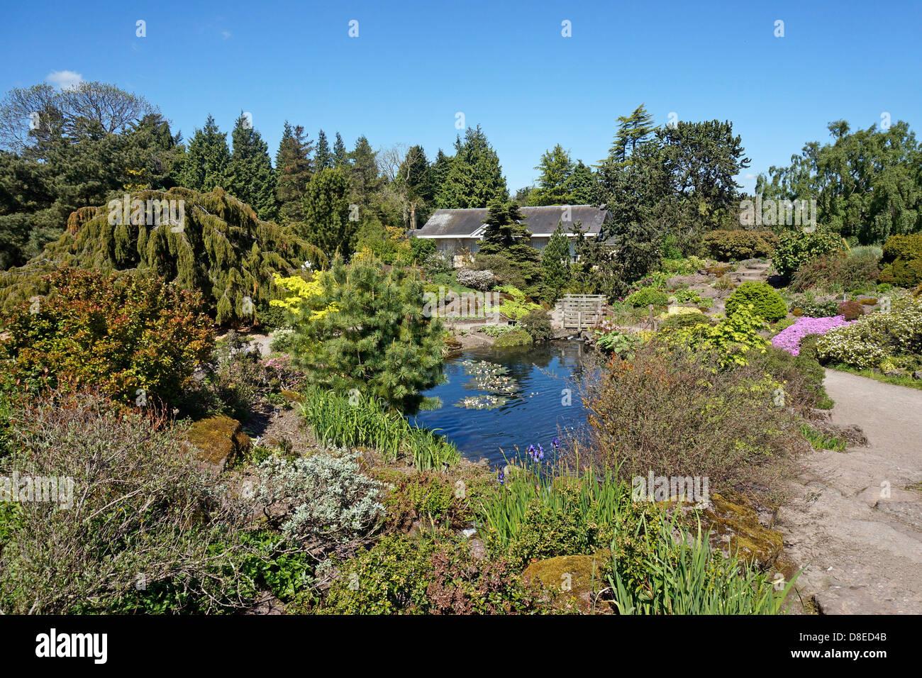 The Rock Garden and stream area of Royal Botanic Garden in Edinburgh Scotland Stock Photo