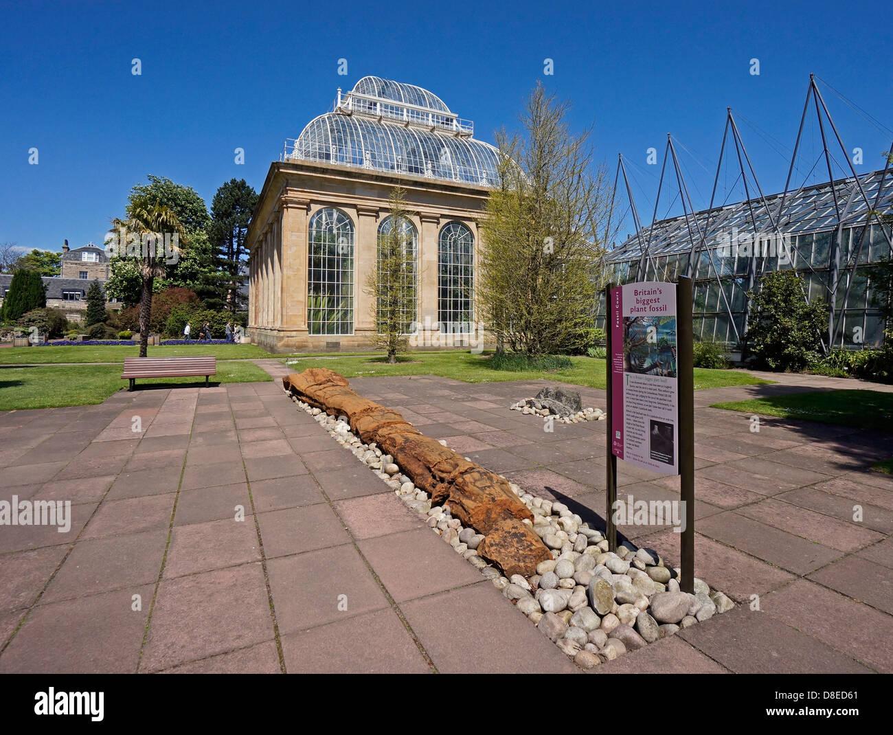 Fossil Courtyard and Palm House in Royal Botanic Garden Edinburgh Scotland - Stock Image